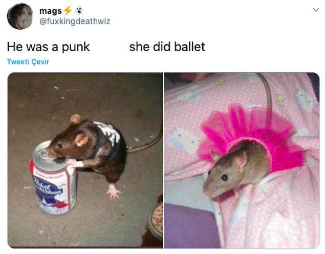 """8. """"Çocuk punkçıydı         kız balerin"""""""