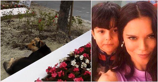 3. Geçtiğimiz ay lenfoma nedeniyle 10 yaşındaki oğlu Pars'ı kaybeden Ebru Şallı, Pars'ın kabrinin başından ayrılmayan köpeğin bakımını üstlendi.