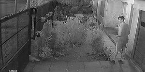 Otomatik Bahçe Kapısına Sıkışan Kediyi Işık Hızında Kurtaran Adam