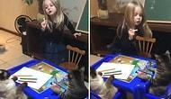 Kedileri Sandalyeye Oturtup Ders Anlatan Ufaklığın Muhteşem Görüntüleri