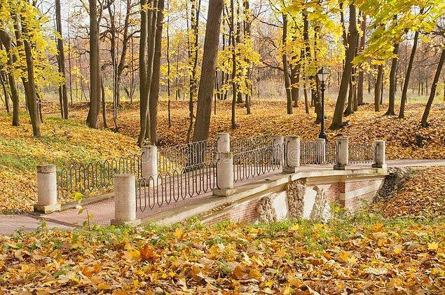 13. Grotesque Köprüsü - Moskova