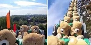 Onlarca Oyuncak Ayının Bir Roller Coaster'a Bindiği Hipnotize Edici Video