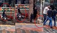 Fırça Sopasıyla Köpeği Dövmüş, Adli Kontrolle Serbest Bırakılmıştı: 4 Bin Lira Para Cezasına Çarptırıldı