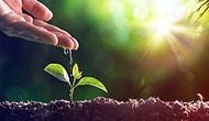 5 Haziran Dünya Çevre Günü: Bu Yıl 'Doğaya Dönüş' Sloganıyla Biyoçeşitlilik Teması Vurgulanıyor