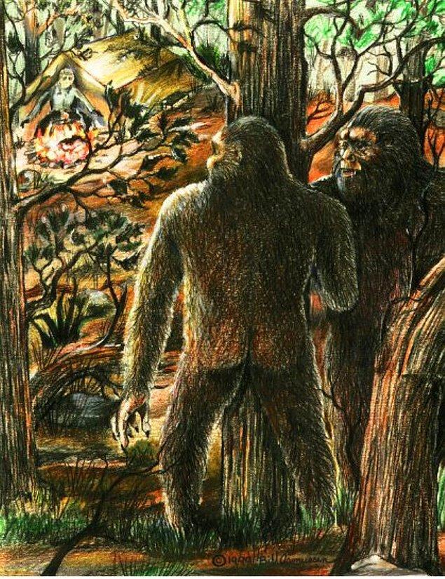 15. 'Yowie' yani Koca Ayak olarakta bilinen bu yaratık Avusturalya'nın efsaneleri arasındadır. Geceleri ormanda dolaşıp gündüzleri kaçan bu yaratık halen bulunmaya çalışılan bir efsanedir.