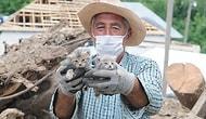 4 Gün Sonra Enkaz Altından Kurtarılan 2 Yavru Kediyi Depremzedeler Sahiplendi