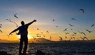 Verdiğin Kararlarda Ne Kadar Özgürsün?