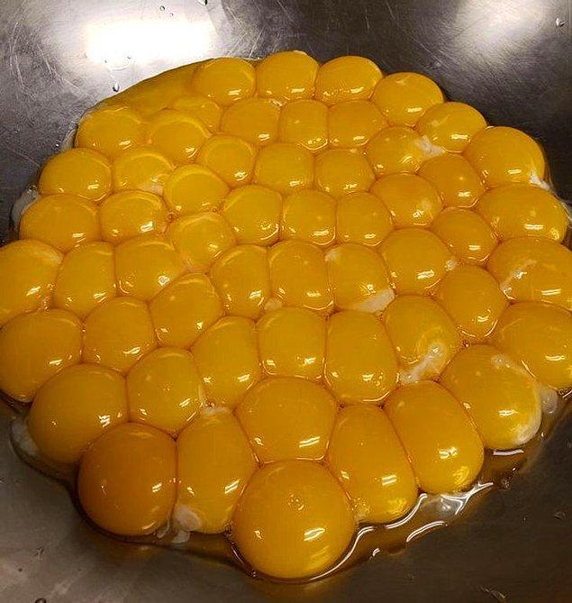 """6. """"50 tane yumurtayı düzenli kıracağım derken son anda yapılan kabın üstündeki o hata..."""""""