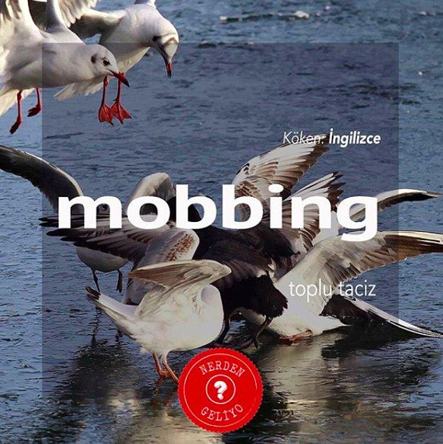 4. Mobbing