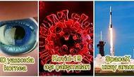 Felaketler Senesi İlan Ettiğimiz 2020 Yılının İlk Yarısına Damga Vuran Bilimsel Gelişmeler