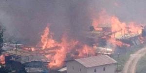 Artvin'de Orman Yangını: 70 Hanenin Bulunduğu Köy Alevlere Teslim Oldu