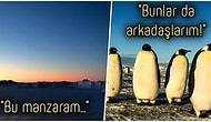 Kutuplarda Yaşamanın Her Saniyesinin Ne Kadar Olağanüstü Olduğunu Bir de Orada Çalışan Bilim İnsanından Dinleyelim!