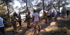 Heybeliada'daki Orman Yangını Kontrol Altına Alındı: 3 Kişi Gözaltında