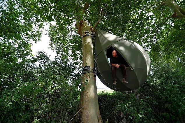 Çadırların ilk ortaya çıkışı bölgedeki ağaçların kesilmesine tepki idi.