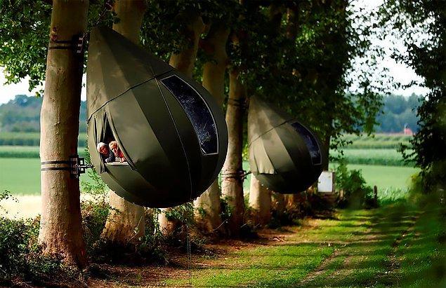 Çadırlar ABD'nin çeşitli bölgelerinde ve Avrupa'da defalarca sergilenmiş.
