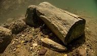 Tek Örneği Türkiye'de: 7.5 Milyon Yıllık Kara Canlısının Fosili Su Altında Bulundu