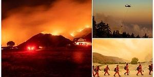 8 Bin Kişi Evini Terk Etti, 20 Bin Dönüm Yok Oldu: ABD'deki Orman Yangını Söndürülemiyor
