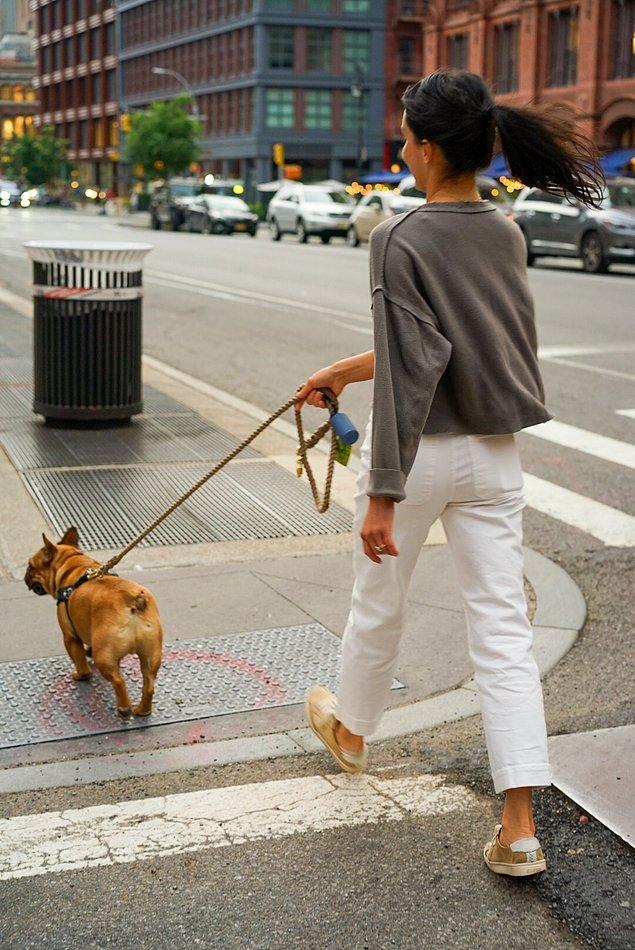 1. Fransa'da köpeğin ardından ilk adımı sol adımla attığınızda mutlu olacağınıza inanılır.