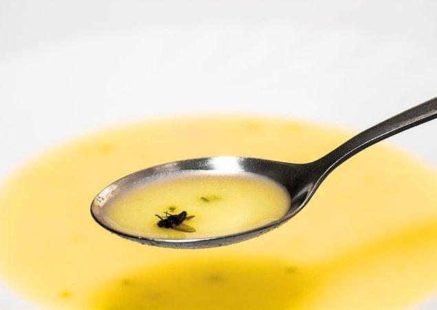 8. Dağıstan'da çorbanıza sinek düşmesi size yakın zamanda hediye geleceğinin müjdesini verir.