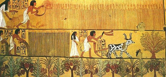 Ekmek ve bira günlük besinlerinin en önemli kısmıydı.