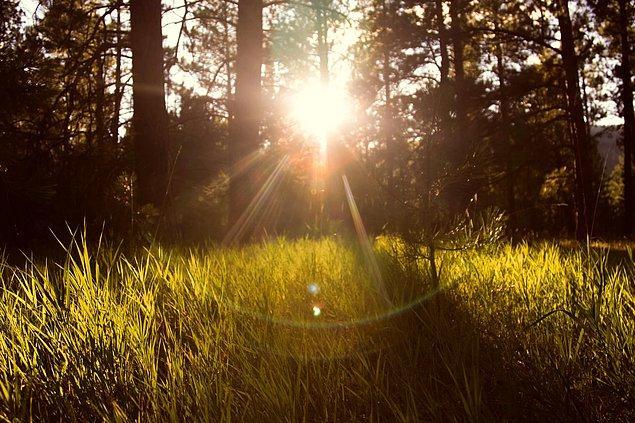 10. Dünya'ya her yıl toplam 3.2 kg ağırlığında güneş ışını çarpar.