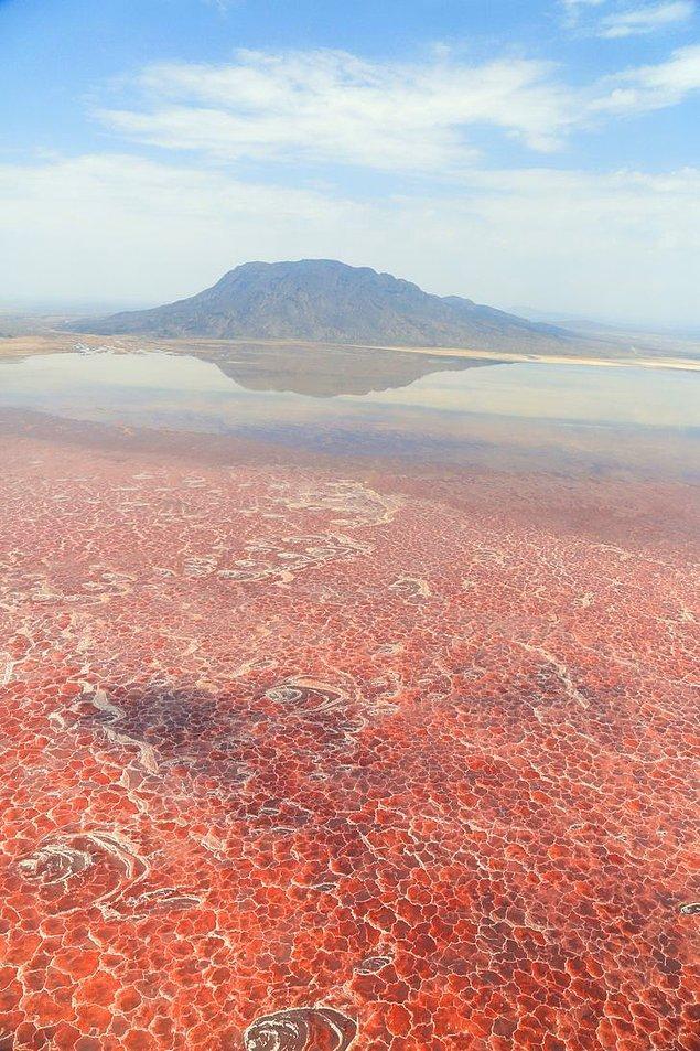 8. Büyük Rift Vadisi'ndeki Natron Gölü.