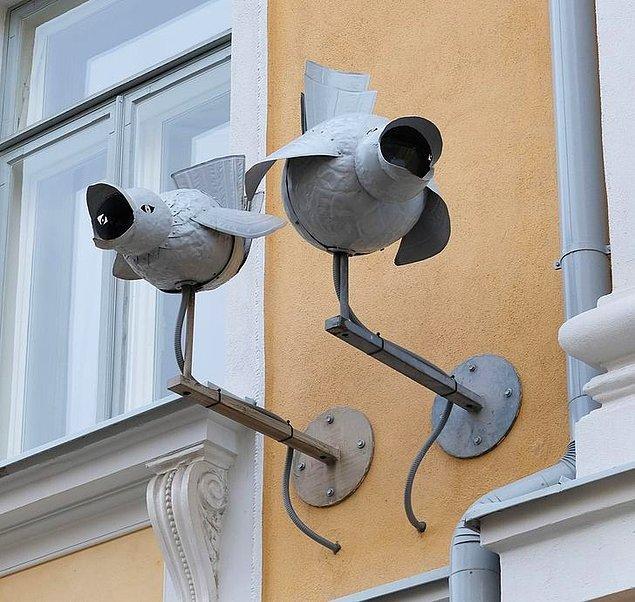 5. Kuş gibi görünen bazı güvenlik kameraları.
