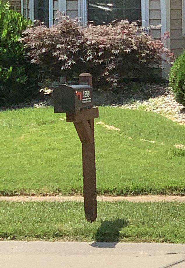 """13. """"Yürüyüşe çıktığımda uçan bir posta kutusu gördüm."""""""