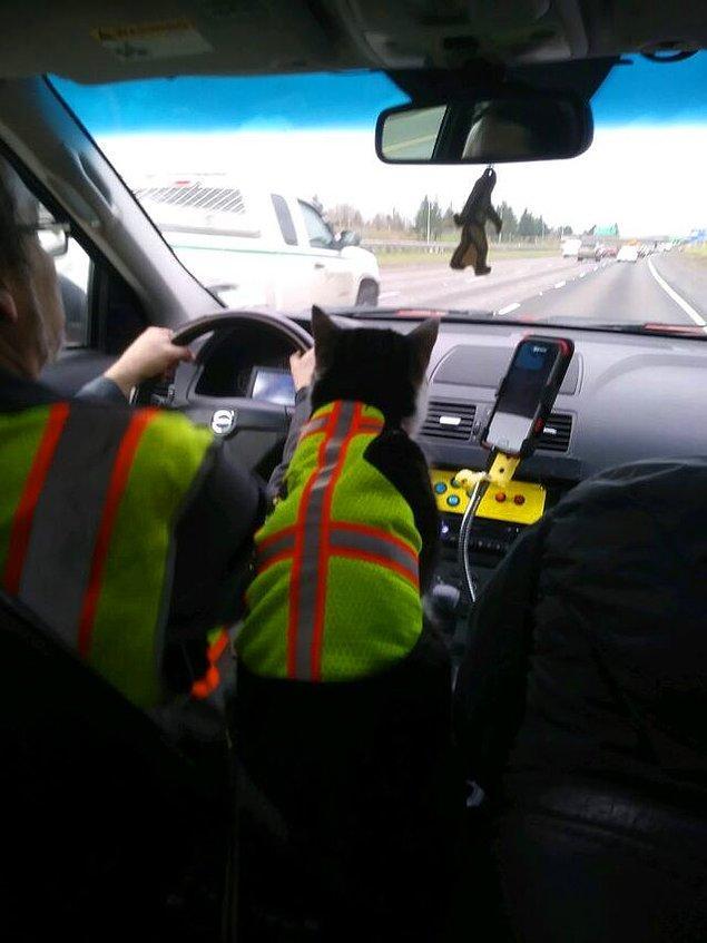 11. Dixie, Yardımcı kamyon şoförü