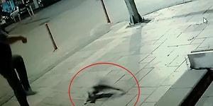 Kediye Tekme Attığı İçin 900 TL Ceza Kesilen Adam İsyan Etti: 'Sanki Adam Öldürdük'