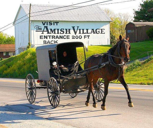 14. Bazı Amiş toplulukları kültürlerini turistler için bir cazibe merkezine çevirirler. Hediyelik eşya veya gezinti yapmanıza izin verilir. Ayrıca ziyarete gittiğinizde istediğiniz evde konaklayabilirsiniz.