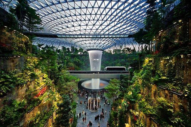 15. Ve son olarak, içerisinde minik bir orman atmosferi yaratan havaalanı: