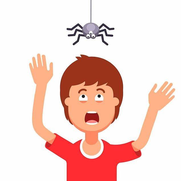 4. Araknofobi - Örümcek, akrep ve diğer eklem bacaklı canlılardan korkma hastalığı