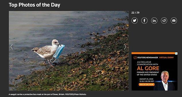"""Fotoğrafın Reuters'ın """"Günün Fotoğrafları"""" kategorisinde 12 Ağustos tarihinde yayınlandığını da görüyoruz."""