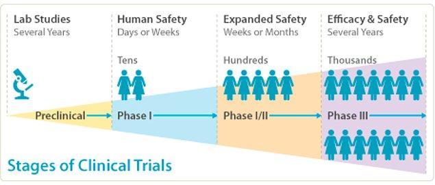 İnsan deneylerinin İse genellikle üç fazı bulunuyor. Her fazın ardından gelen süreçte daha fazla insan gerekiyor.