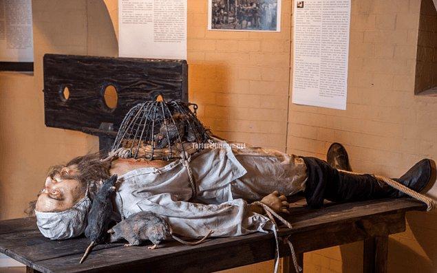 9. Avrupa'da mahkumların karınlarının üstüne içi fare dolu bir kova bağlanıyor ve kova ısıtılmaya başlıyor.