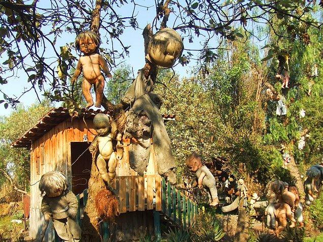 3. Bebekler Adası (Meksika)