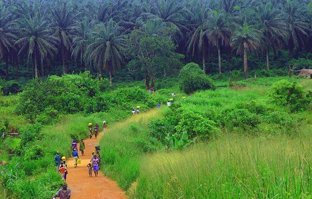 24. Nijerya - Kadınlar: 55 yıl / Erkekler: 53.3 yıl