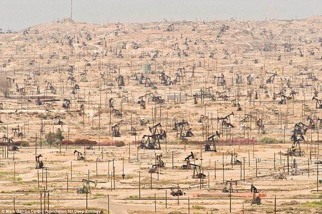 15. California'da hektarlarca alanı hayatsız bırakan petrol işletmesi.