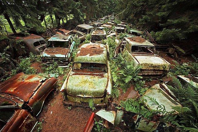 Dünyanın en büyük araba mezarlığı ise Belçika'da bulunuyor.