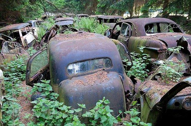 Savaş sırasında Amerikan askerleri arabalarını daha sonra almak için buraya bırakmış.