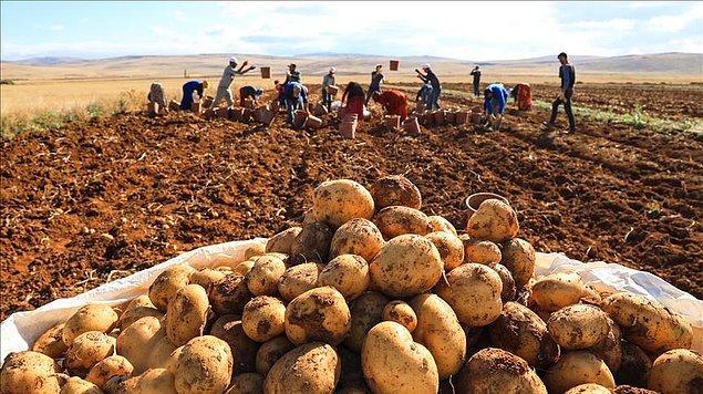 """""""AKP iktidarının çiftçiyi getirdiği durum bu"""""""