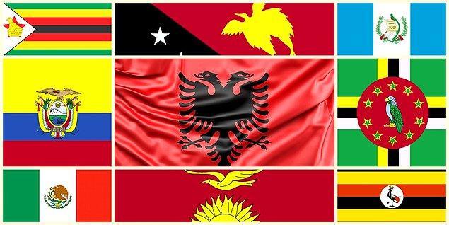 Birbirinden farklı birçok kuşu bayraklarına taşıyan 9 ülke bayrağını anlatmaya çalıştım.