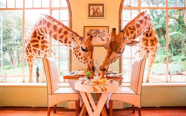 3. Giraffe Manor, Kenya