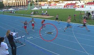 İstanbul'daki 100 Metre Yarışını 7 Atlet ile Birlikte Tamamlayan Kedi