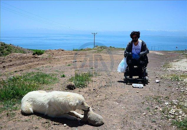 Sokaklardaki yaralı ve yardıma muhtaç hayvanları da veterinere götürüp tedavilerini yaptıran Avcı, bazı sokak hayvanlarının insanlar tarafından sahiplenmesini sağlayarak sıcak yuvalara kavuşmasına da öncülük ediyor.