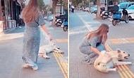 '10 Saniyede Köpeği Sev' Görevini Yapmak İsteyen Kadının Hayatının Şokunu Yaşadığı Anlar