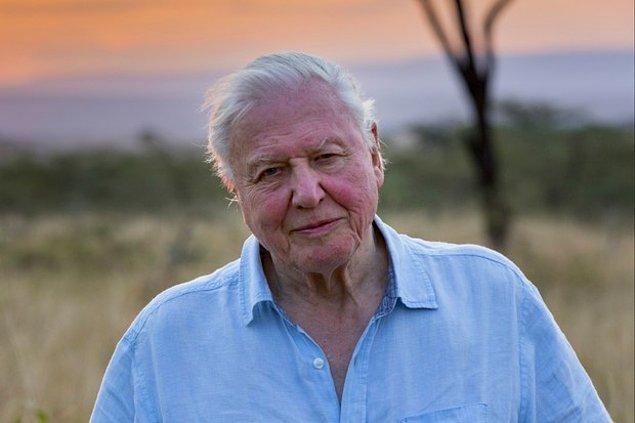 14. David Attenborough: A Life on Our Planet / 4 Ekim