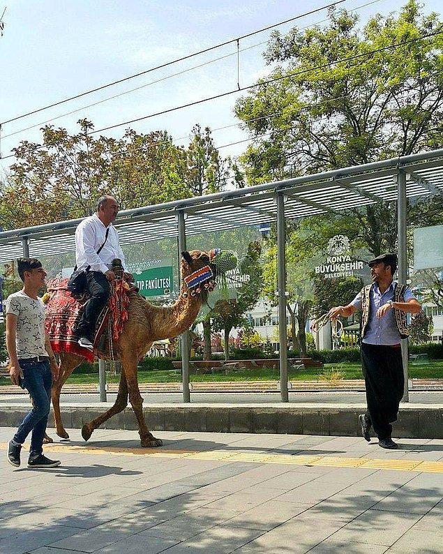 5. Türkiye'de deve ile dolaşılan tek yer burası olabilir.