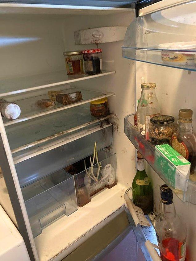 """17. """"Birkaç aylığına şehir dışına çıktığım dönemde, ev arkadaşım evden ayrıldı. Giderken elektriği de kapatmış ancak buzdolabını temizlemeyi unutmuş."""""""